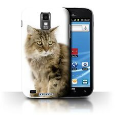 STUFF4 Back Case/Cover/Skin for Samsung Galaxy S2 Hercules/T989/Cat Breeds