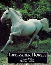Tomas Micek LIPIZZANER HORSES spanish riding school vienna