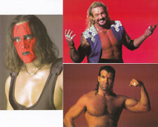 PANINI WCW NWO SUPERSTARS PHOTOCARDS 1998 - 3 SAMMELKARTEN 10x15 STING DDP HALL