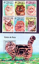 Sahara 1999 , Different Cats , M/S + Stamp set MNH