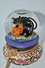 RARE Jim Shore Halloween Snowglobe Waterball Black Cat Pumpkin  4014029 with Tag