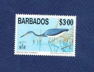 BARBADOS  # 864 - VF MNH - $3 Heron Birds
