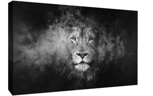 Black & White Abstract Lion CANVAS WALL ART Picture Print, A1, A2 Various sizes