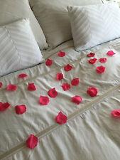SACCO DI ROSE PETALS GRIGIO SAN VALENTINO ROSE CORIANDOLI ROMANTICO 50 sfumature REGALO