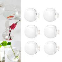 6x Wall Hanging Glass Planter Hydroponic Vase Terrarium Ball Home Decor 10cm Set