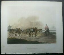 Convoy of wine mules Essex Vidal, Picturesque illustrations of Buenos Ayres