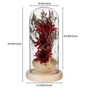 Dried Flower In Glass Bottle Handmade Microlandscape Wedding Decor Romantic Gift