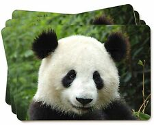 Face of a Giant Panda Bear Picture Placemats in Gift Box, ABP-3P