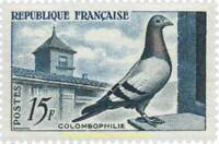 EBS France 1957 Pigeon Breeding - Colombophilie YT 1091 MNH**