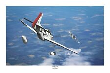 """WWII WW2 USAAF Ace Robin Olds Mustang P-51 Aviation Art Photo Print - 8"""" X 12"""""""