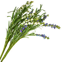 Details about  /Artificial Flowers Rosemary Poppy Branch 2 Head Home Garden Decoration 3pcs