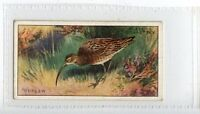 (Jd7379) PLAYERS,GAME BIRDS & WILD FOWL,CURLEW,1927,#3