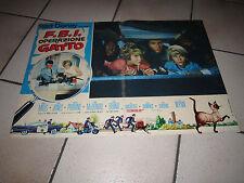 FOTOBUSTA  F.B.I. OPERAZIONE GATTO FBI (That Darn Cat!) Walt Disney Mills,Jones
