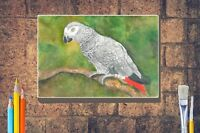 African Grey Parrot Art Print Giclee A4 A3 / Box Canvas A3 A2 A1 size Gift