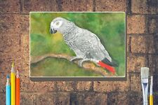 More details for african grey parrot art print giclee a4 a3 box canvas a3 a2 a1 mothers day gift