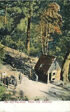HALF WAY HOUSE - WILSON TRAIL CALIFORNIA -UNDIVIDED BACK- BIRDSEYE VIEW POSTCARD