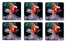 GOLDFISH COASTERS - 1/4 BAR & BEER SET OF 6