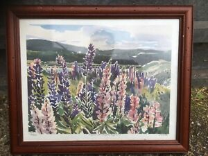 Framed Signed Limited Edition Landscape Print Lupins Nova Scotia Roger Savage