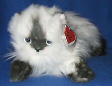 Ty Classic Plush - Angel the Himalayan Cat – Mint with Mint Tag