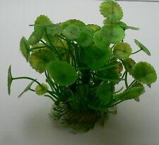 Künstliche Wasserpflanze Aquarium Plastik 15 cm x 13cm  sehr realistisch