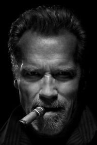 Arnold Schwarzenegger with Cigar Actor Graphic Print Wall Art - POSTER 24x36