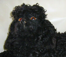 adorable chien loulou  range pyjama case  rare version   Caniche noire