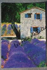 DROME PROVENCALE CHAMP LAVANDE BASTIDON CHIEN    postcard