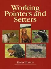 Working Pointers and Setters-ExLibrary