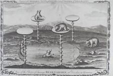Millar's Geography - ELECTOR OF SAXONY'S BEAR GARDEN, DRESDEN Engraving c1780s