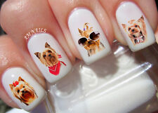Yorkshire Terrier Nail Art Stickers Transfers Decals Set of 50