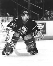 1997 Buffalo Sabres DOMINIK HASEK Glossy 8x10 Photo NHL Hockey Print Poster