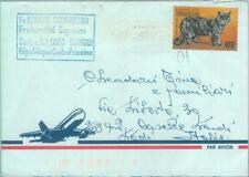 85433 - CENTRAL AFRICA - Postal History - AIRMAIL COVER to ITALY 2001 - CATS