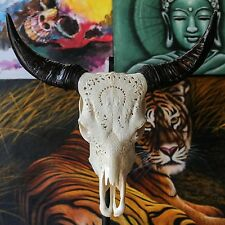 REAL HAND CARVED COW SKULL with XL HORNS Taxidermy buffallo longhorns steer bull