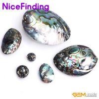 2 Genuine Paua Abalone Shell Large 30x20mm Oval Sea Shell Beads E471