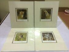 David Shepherd - Ocelot, Snow Leopard, Lion & Leopard (m) set of 4