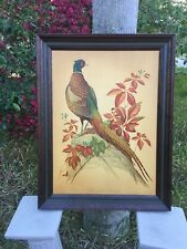 Vintage Mid Century Ring Necked Pheasant Framed Print RT Peterson Hunting Lodge