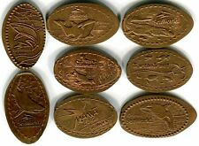 Turtle Trek Manta Sharks & More SeaWorld Collection Of 8 Copper Pressed Pennies