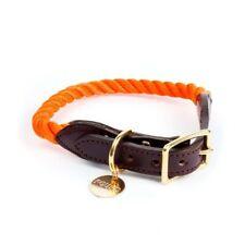 FOUND MY ANIMAL Orange Nylon & Leather Dog Collar Medium