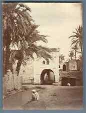 A. Maure, Algérie, Biskra  Vintage albumen print. Vintage Algeria Tirage album