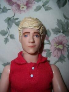 HASBRO 1D DIRECTION SINGING DOLL POP GROUP CELEBRITY NIALL HORAN FIGURE WORKS