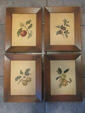 VTG I.B. Fischer Set of 4 Fruit Pictures Yellow Elliot Bennett Apple Old Quining