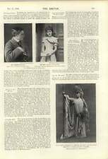 1900 Crufts Irish Terrier Retriever Champion Fairy Greyhound Lilian Pauncefote