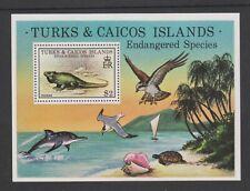 Turks & Caicos - 1979, Endangered Wildlife, Iguana sheet - MNH - SG MS539
