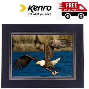 Kenro Photo Strut Mounts 8x10 Picture Holder Blue - Box of 50 PMA142/50