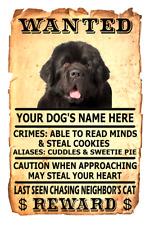 Newfoundland Dog Wanted Poster Flex Fridge Magnet Personalized Name Art