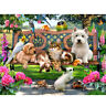 5D Diamond Painting Embroidery Cross Craft Stitch Arts Kit Mural Home Decor AU