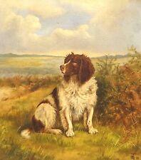 Fine Large 19th Century Springer Spaniel Dog Portrait Antique Oil Painting