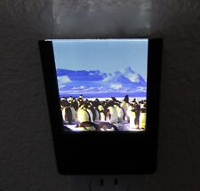 Nightlight - Emperor Penguins -colony- rectangular- slim -thick glass