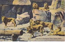 Lion Den in Zoological Park, Detroit, MI, Linen  Postcard