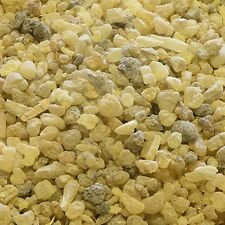 FRANKINCENSE STEM Boswellia serrata RESIN, Bulk Natural Tea 50g